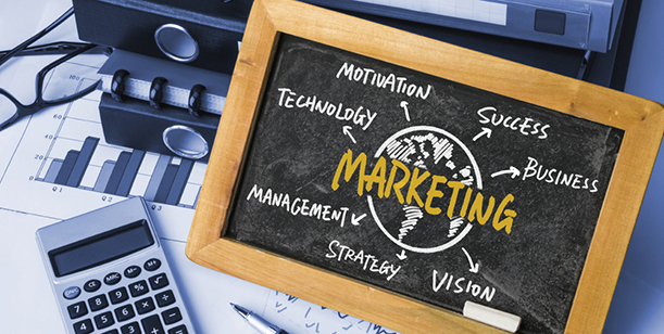 5 Reasons To Add a Virtual CMO to Your Marketing Team